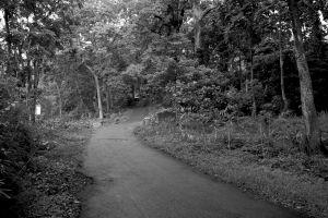 jalan sepi menanjak
